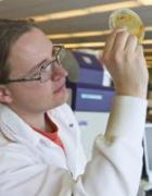 Dr. Tristan de Rond, Ph.D. : Postdoc